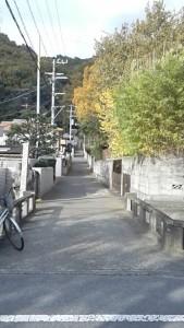 一草庵への入口